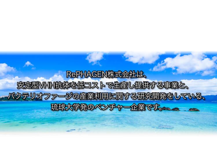 スライド画像4